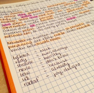 Language Notebook: Slovak Dialogue