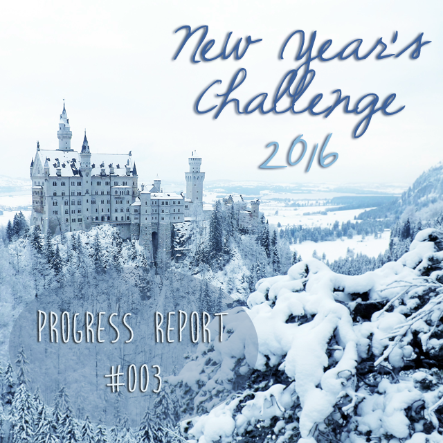 New Year's Challenge Progress #003