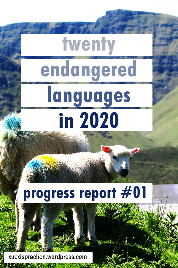 20 langs in 2020 progress 01