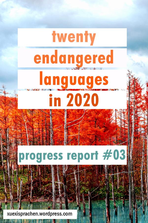 20 langs in 2020 progress 03