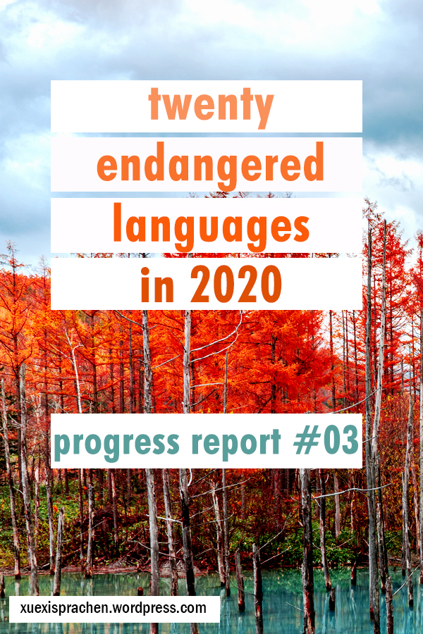 20 langs in 2020 progress 03