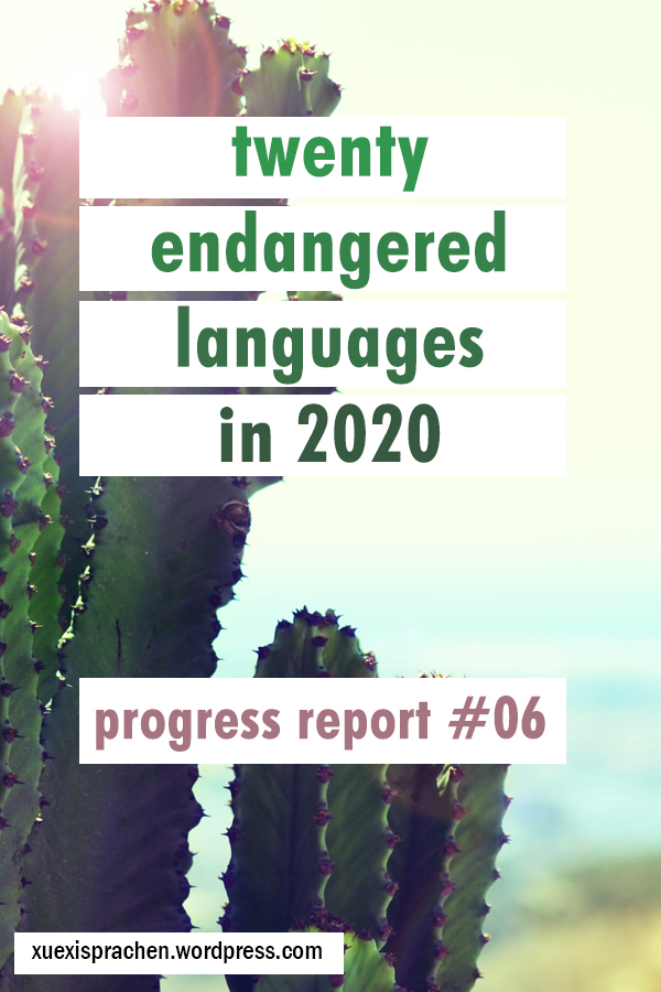 20 langs in 2020 progress 06