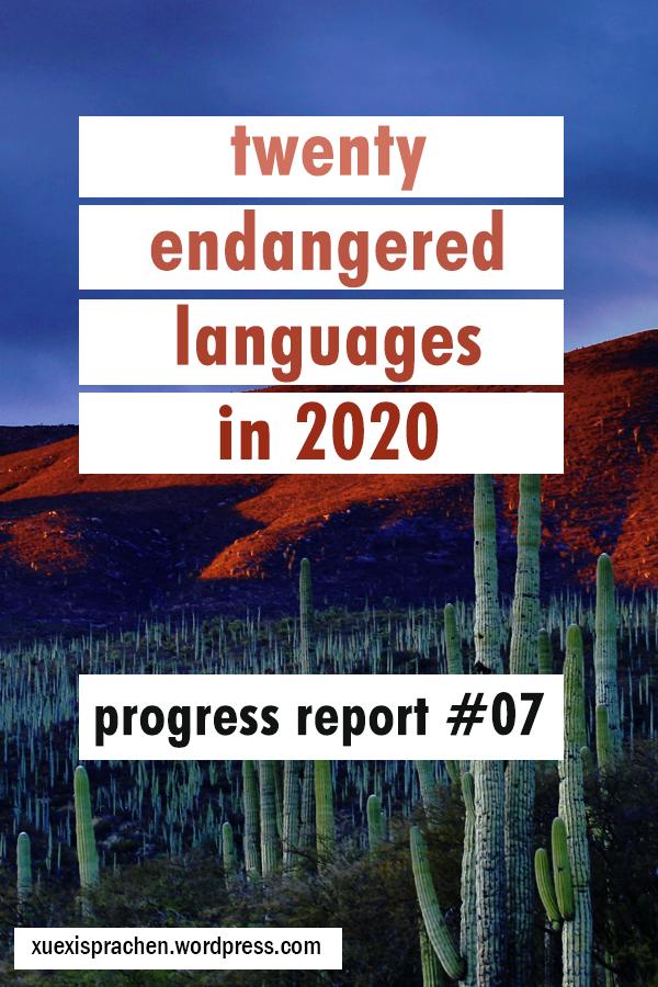 20 langs in 2020 progress 07