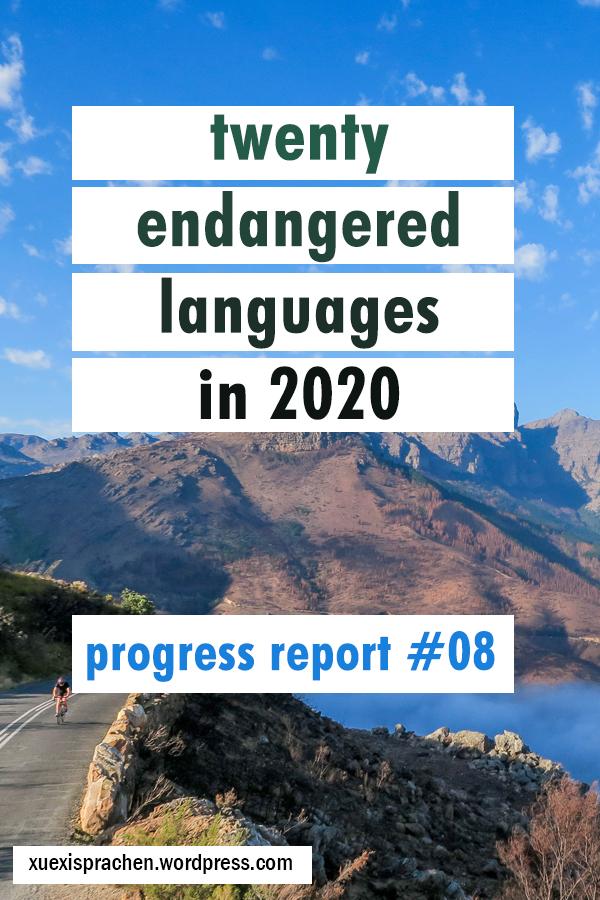 20 langs in 2020 progress 08 mi